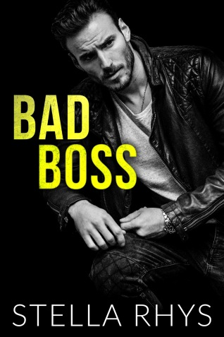 d92c6-bad2bboss2bebook2bcover