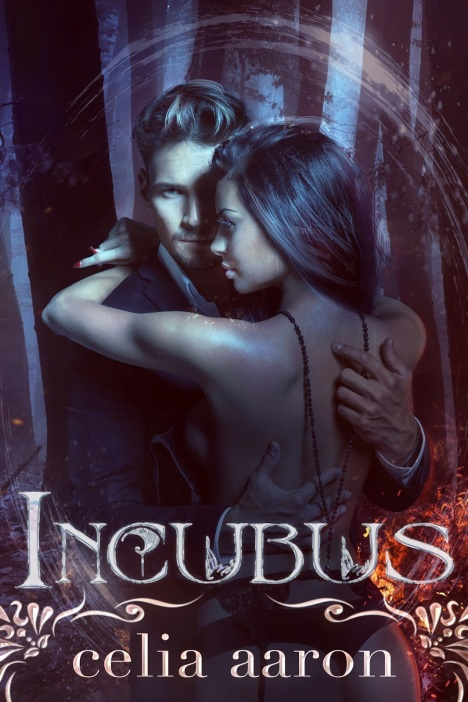 29875-incubus2bebook2bcover